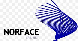norface